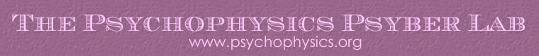 The Psychophysics Psyber Lab